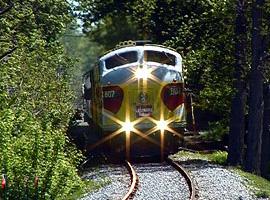 TrainWoods2